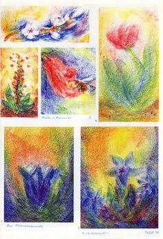 Tafю 54: Pflanzenkunde 02 in Bwfarb. (4.-6. Schuljahr) 1. weisse Blüten mit blau-gelbem Hintergrund 2. rote Tulpe auf grün-braun-gelbem Boden vor gelbem Hintergrund Mitte links: 3. Stabblüte auf rot-braunem Boden mit roten Insekten vor gelbem Hintergrund auf roter Erde] Mitte rechts: 4. Blüte und Hummel unten links: 5. blauer Enzian auf blauem Boden vor Abendrot unten rechts: 6. blauer Enzian auf blau-rotem Boden vor gelb-rotem Himmel mit Heiligenschein