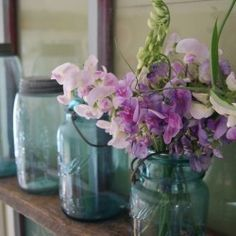 I have about 80 of these jars. Can't wait to have a house to display them in!