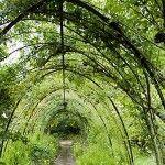 Great Simple backyard landscape design ideas 150×150 read more on http://bjxszp.com/flooring/simple-backyard-landscape-design-ideas-150x150/