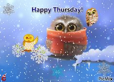 See the PicMix Happy Thursday ''Owlveryone!'' belonging to leahbelle on PicMix. Good Morning Image Quotes, Good Morning Gif, Good Morning Happy Thursday, Happy Day, Thursday Gif, Drake, Work Memes, Winter Beauty, Animation