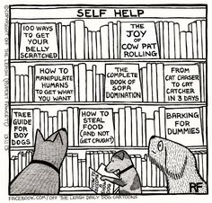94 Hilarious Comics About Life With Dogs By Off The Leash - Funny Dog Quotes - Funny Dog Cartoons The post 94 Hilarious Comics About Life With Dogs By Off The Leash appeared first on Gag Dad. Schnauzers, Dog Quotes Funny, Funny Dogs, Funny Animals, Baby Animals, Funny Memes, Bull Terriers, Shih Tzu, Beagle