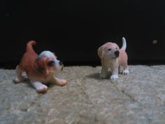 I have two little  dogs. On left is Romy. And on right is little Endy.
