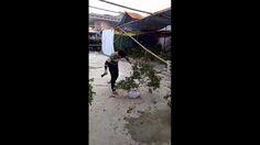Chiều 30 Tết....  Video: Pham Ngoc Hai