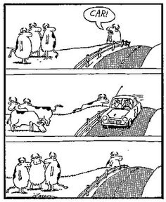 Fave 'Far Side' comic ever--I think about this nearly every time I see cows in a field!