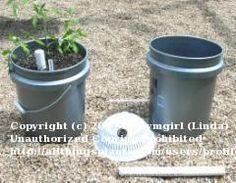 Illustrated instructions to turn 5-gallon buckets (or large containers) into self-watering containers for veggies & plants.