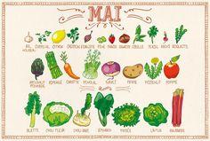 Calendrier des fruits et légumes du mois de mai.