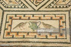 Foto de stock : Ancient Roman mosaic floor (Dionysus Mosaic), Roman-Germanic Museum, Cologne, Bavaria, Germany