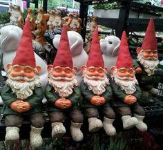 British Gnome Store