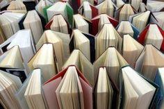 Auteur d'un livre et l'édité : un rêve accessible,mais qui peut rapporter le triple à son investisseur