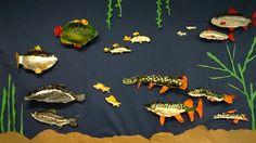 Täytettyjä sanomalehtikaloja Teaching Class, Teaching Science, Teaching Art, Art For Kids, Crafts For Kids, Arts And Crafts, Biology For Kids, Class Decoration, Kindergarten Art