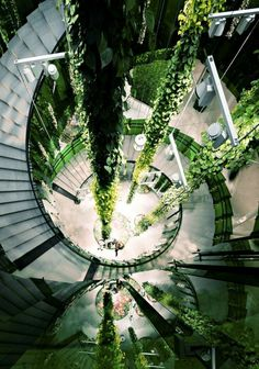 Utilisez architecture organique pour votre demeure! Modern Architecture, Biophilic Architecture, Amazing Architecture, Urban Design, Interior Design Inspiration, Patio Interior, Apartment Interior Design, Inspirer, Cities