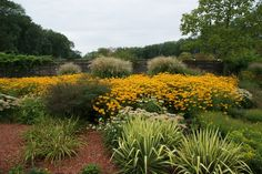 Garten Tulln