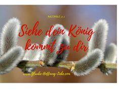 Demütig auf einem Esel zieht er ein, nicht als Herrscher, sondern er macht sich klein. Voller Demut und Sanftmut begegnet er den Menschen hier. Siehe, dein König kommt zu dir. Er macht den ersten Schritt, ja er hat dich zuerst geliebt. Er kommt, weil du ihm wichtig und wertvoll bist, er kommt, weil er dich nicht vergisst. Er ist dein König und er will dir begegnen, bist du bereit ihm den Weg zu ebnen? #Demut #Freiheit #König #Kreuz #Liebe #Palmsonntag #Sanftmut #Sehnsucht E Cards, Religion, Love, Community, Movie Posters, Christian Poems, Palm Sunday, Humility, Longing For You