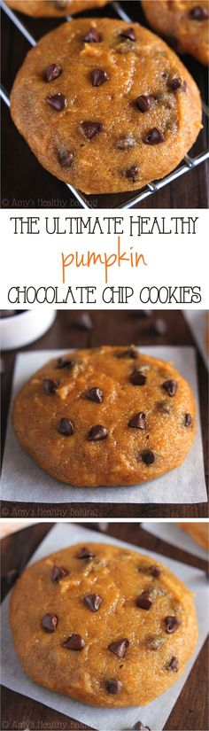 The ULTIMATE Soft & Chewy Pumpkin Chocolate Chip Cookies -- these skinny cookies don't taste healthy at all! You'll never need another pumpkin cookie recipe again! So delicious Healthy Baking, Healthy Desserts, Just Desserts, Delicious Desserts, Yummy Food, Healthy Pumpkin Cookies, Healthy Pumpkin Recipes, Protein Cookies, Indian Desserts