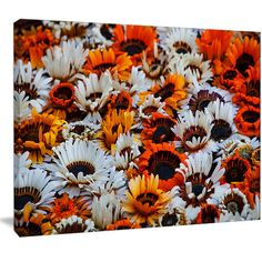 DesignArt 'Colorful Sunflowers in Garden' Photographic Print on Wrapped Canvas Size: