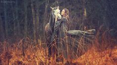 Horses Anka Shuravleva, Portugal www.Com Real Estate México King Horse, My Horse, Pretty Horses, Beautiful Horses, Animals Beautiful, Medieval, Horse Photography, Fall Photography, Wild Horses