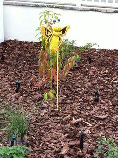 A new metallic critter joins the garden.
