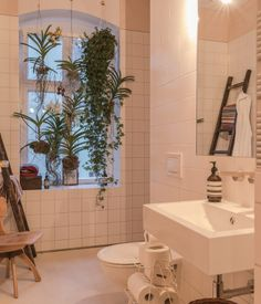 Bathroom of the Freunde von Freunden X Vitra Apartment  Hanging plants and an open shower accentuate the bathroom's light, airy layout. Sink by Alape, shower and fixtures by Dallmer and Dornbracht. Photo by Steve Herud