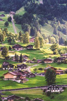 Grindelwald, Switzerland | Tom Wilkason