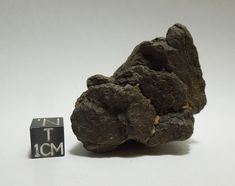 Unclassified Saharan meteorite. (uNWA). Likely L or H type chondrite with wind polished desert varnish and remnant fusion crust. Captive sand grains. Available at Galactic Stone & Ironworks.