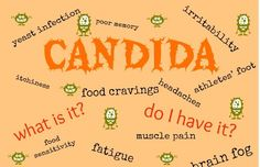 I was so sick and didn't know why - turns out this was a HUGE part of it! Do you have unexplained health problems? Candida might be the cause. Find out what candida is, how to know if you have it, and how to DITCH it! Candida Albicans, Candida Overgrowth, Yeast Overgrowth, Yeast Infection Symptoms, Yeast Infection Treatment, Nail Infection, Candida Yeast, Candida Diet, Candida Fungus