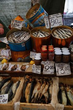 Anchovies and other dried fish