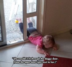 parenting meme of a toddler trying to fit into the doggy door but failing and crying instead Kids Throwing Tantrums, Reasons Kids Cry, Funny Photos, Cute Pictures, Baby Pictures, Animal Pictures, Funny Fails, Funny Memes, Memes Humor