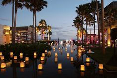 Luminaries on water? What could be better??