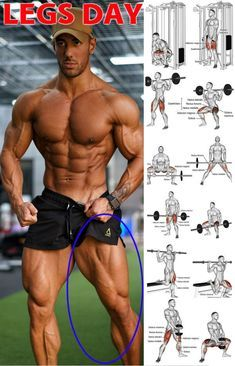 Gain Size And Strength For Monster Legs In 4 Weeks GymGuider com is part of Weight training workouts Here we have the 4 week leg programme! This is because a much as you like the look of muscle mas - Leg Workouts For Men, Fitness Workouts, Weight Training Workouts, Gym Workout Tips, Biceps Workout, Calf Muscle Workout, Shoulder Workouts For Men, Killer Leg Workouts, Kids Workout