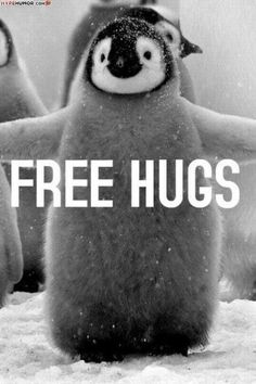 Hug a penguin for free. #macwonderland