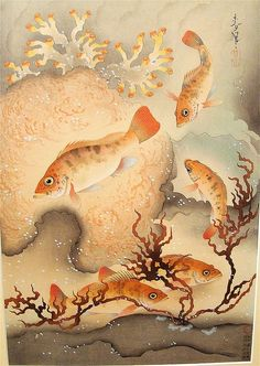 Ohno Bakufu (1888-1976) went down in a submarine to sketch fish for this famous series of prints and paintings known as The Great Japanese Fish Picture Collection (Dai Nihon gyorui gashu).