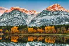 Guide: 10 amazing places to see fall colours around Alberta Waterton Lakes National Park, National Parks, Alberta Canada, Great Places, Places To See, Amazing Places, Hiking Routes, Mountain Park, Boat Tours