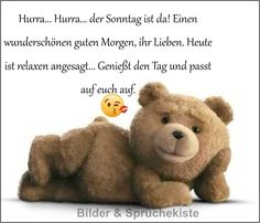 Teddy Bear, Animals, Sticker, Pictures, Happy Weekend, Friday Funnies, Wednesday, Morning Sayings, Good Night