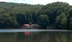 Lacul cu nuferi de la Dognecea