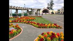 Napier New Zealand, Cities, Mansions, House Styles, Videos, Manor Houses, Villas, Mansion, City