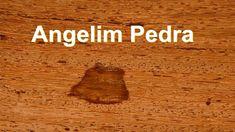 Uma das madeiras mais populares e versáteis no Brasil. O angelim pedra pode ser usado de telhado a móveis.