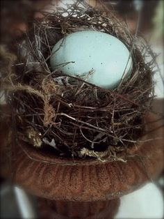 Brown and blue - one of my favourite colour combinations! Love the bird nest in the urn :-)♥