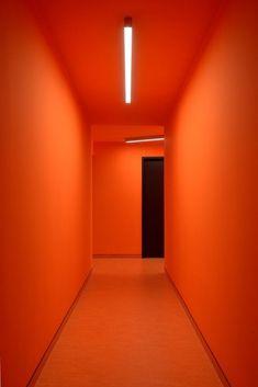 Image 1 of 28 from gallery of K Botiči Student's Home / Schindler Seko. Photograph by Ondřej Polák Orange Aesthetic, Rainbow Aesthetic, Aesthetic Colors, Orange Art, Orange Walls, Orange Color, Orange Twist, Orange Leaf, Teal Orange
