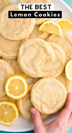 lemon desserts Soft and chewy Lemon Cookies are a crowd favorite cookie that you can make anytime of the year. These lemon sugar cookies are thick amp; chewy and easy to freeze. Easy to make in one bowl with fresh lemon and everyday ingredients. Lemon Recipes, Sweet Recipes, Lemon Dessert Recipes, Rib Recipes, Tofu Recipes, Good Healthy Recipes, Desserts With Lemon, Easy Desserts To Make, Healthy Lemon Desserts