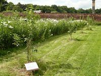Tour of the Garden - Wortley Walled Garden Heritage Project