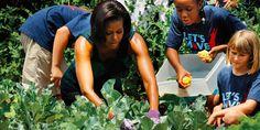 Michelle Obama, il suo orto resterà alla Casa bianca dopo l'insediamento di Trump