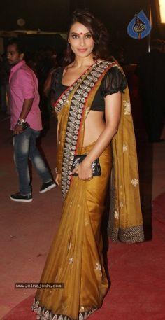 Sabyasachi sari. Ruffled sleeve blouse