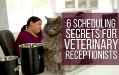 6 Scheduling Secrets for Veterinary Receptionists - Get your practice's schedule under control with these tips. #VetTechLife