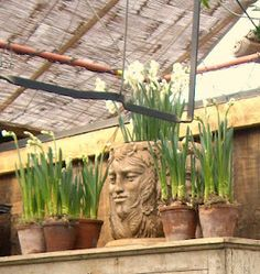 spring pots at Petersham Nurseries
