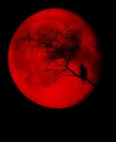 Red Moon #thepretender #thepretenderlives #jarodsfavoritecolor…                                                                                                                                                                                 Mehr