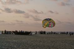 Surrounded by palm trees, Talsari beach is a popular destination among adventure & thrill seekers alike. #Mandarmoni