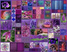 Purple Panoply (374 pieces)