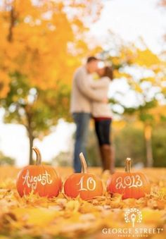 Wedding Trends, Fall Wedding, Our Wedding, Dream Wedding, Wedding Ideas, Wedding Blog, Pumpkin Wedding, Wedding Pumpkins, Wedding Ceremony