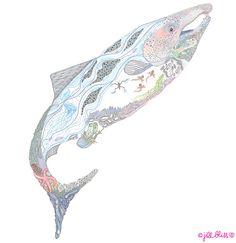 anima-salmon