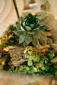 Arranjos florais para casamento: Combinadas com madeira, as suculentas são perfeitas para um ecowedding!